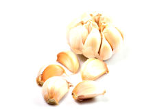 Fresh garlic isolated on white royalty free stock photography