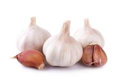 Fresh garlic isolated on white background Royalty Free Stock Image