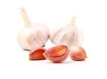 Fresh garlic Royalty Free Stock Photos