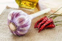 Fresh Garlic, Oil and Chili Ready for Pasta. Young garlic with some red chillis and olive oil royalty free stock photography