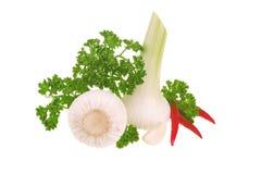 Fresh Garlic, Parsley And Chilli Peper Stock Photo