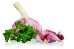 Fresh garlic and parsley Royalty Free Stock Image
