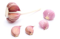 Fresh garlic and pink onions on white background Royalty Free Stock Images