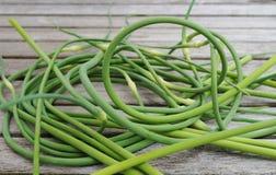 Fresh garlic scape stalks Royalty Free Stock Images