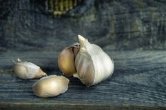 Fresh garlic and some cloves of garlic close-up on wooden backgr. Fresh garlic and some cloves of garlic close-up on a wooden background stock photography