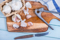Fresh garlic and squeezer Royalty Free Stock Images