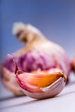 Fresh garlic - studio concept Stock Photo