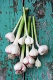 Fresh garlic, top view Royalty Free Stock Photography