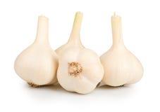 Fresh garlic on white Royalty Free Stock Photo