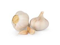 Fresh garlic. On white background Stock Photos