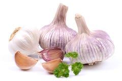 Fresh garlic Royalty Free Stock Photo