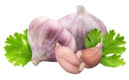 Free Fresh Garlic With Parsley Isolated On White Background Stock Image - 98396091
