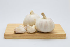 Fresh garlic on wooden board. On white background Stock Photography