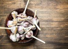 Fresh garlic in a wooden bowl. On a wooden table Royalty Free Stock Photos