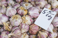 Fresh garlics in a market Royalty Free Stock Photography