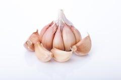 Fresh garlics Stock Image