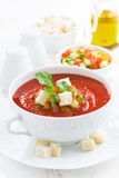 Fresh gazpacho in a white bowl, vertical, close-up. Fresh gazpacho in a bowl, vertical, close-up Royalty Free Stock Images
