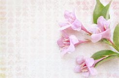 Fresh gentle template with pink flowers. Light background. stock photos