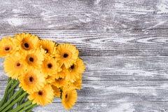 Fresh Gerbera Flowers on Wooden Background Stock Photos
