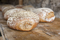 Fresh German wood oven bread Royalty Free Stock Image