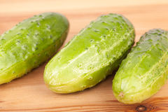 Fresh gherkin. Fresh tree gherkins on the wooden table Royalty Free Stock Image