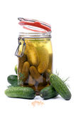 Fresh gherkin Royalty Free Stock Images