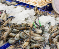 Fresh Giant prawn are on sale in the bazaar Stock Photo