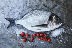 Gilt head bream. Fresh gilt head bream with som ingredients stock photography