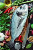 Fresh Gilt-head bream with spices and seasoning Royalty Free Stock Images
