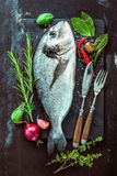 Fresh Gilt-head bream with spices and seasoning stock image