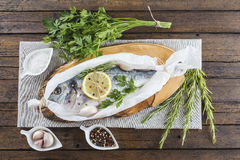 Fresh gilt-head sea bream ready to cook Royalty Free Stock Images