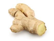 Fresh ginger Royalty Free Stock Photos