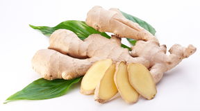 Fresh ginger with leaves. Royalty Free Stock Photo