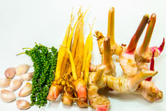 Fresh ginger root. Stock Images