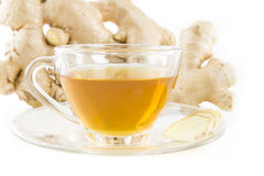 Fresh ginger and tea in glass on white. Stock Image