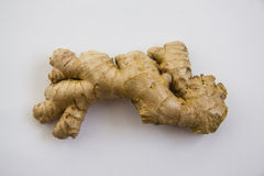 Fresh Ginger on white Royalty Free Stock Photo