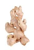 Fresh ginger, zingiber root isolated on white background Royalty Free Stock Image