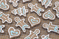 Fresh gingerbread cookies Royalty Free Stock Images