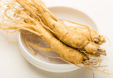 Fresh ginseng root texture Stock Image