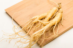 Fresh ginseng stick Royalty Free Stock Images