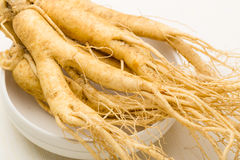 Fresh Ginseng texture Stock Photography