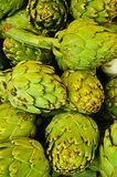 Fresh globe Artichokes Royalty Free Stock Photo