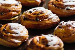 Fresh gluten free sweet swirl bun with raisins. Closeup Stock Photo