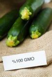 Fresh GMO zucchini Stock Images