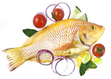 Fresh gold fish with tomatoes