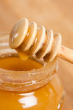 Fresh gold honey dipper Royalty Free Stock Photos
