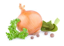 Fresh gold onions, pimento, parsley and bay leaves Royalty Free Stock Image