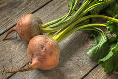 Fresh golden beetroot on a timber table Royalty Free Stock Images