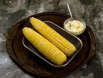 Fresh Golden Corn. Royalty Free Stock Images