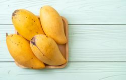 Fresh and golden mangoes. On wood background stock images